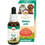 Green Remedies Detox Pets Essenza Per Animali 30 ml